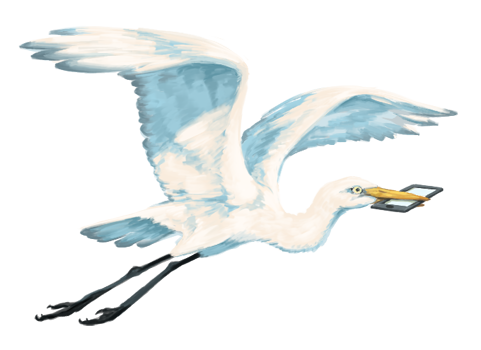 A white heron flies through the air with a smartphone in its beak